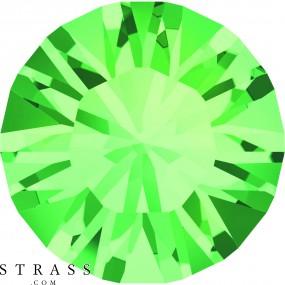 Swarovski Crystals 1028 PP 13 CHRYSOLITE F (669746)