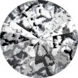 Swarovski Crystals 1122 Crystal (001) Black Patina (BLAPA)