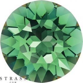 Swarovski Crystals 1088 PP 31 ERINITE F (1171081)