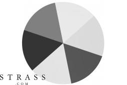Swarovski Kristalle 5062 MM 5,5 CRYSTAL LTCHROME (5415480)