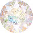 Swarovski Kristalle 1088 Crystal (001) White Patina (WHIPA)